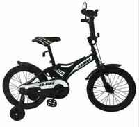 XD-BIKE  G11VE 20 (2018)